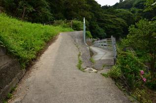 nagoshi_10.jpg