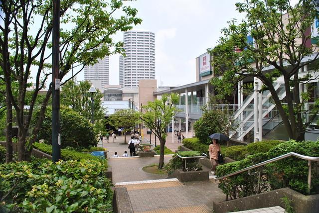 nishiguchi_03.jpg