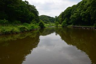shikinomori_01.jpg