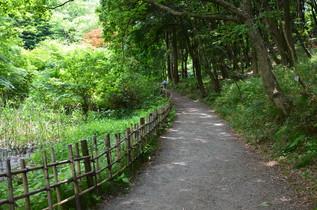 shikinomori_04.jpg