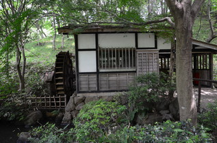 shikinomori_07.jpg