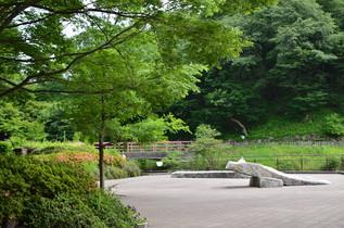 shikinomori_14.jpg