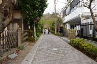 syakadoh_05.jpg
