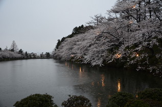 takada_05.jpg