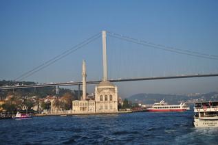 turkey_202.jpg