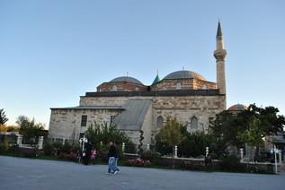 turkey_956.jpg