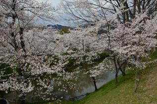 ueda_006.jpg