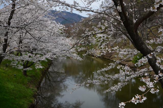 ueda_007.jpg