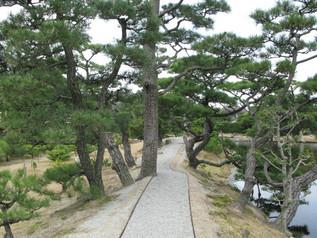 wakayama_11.jpg