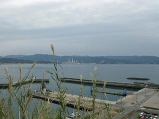 wakayama_13.jpg