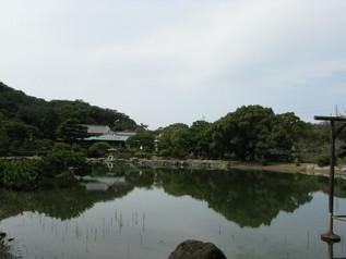 wakayama_23.jpg
