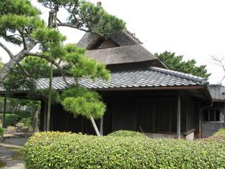 wakayama_24.jpg