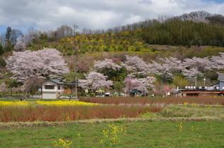FukushimaTrip_01.jpg