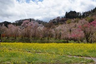 FukushimaTrip_03.jpg