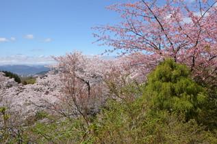 FukushimaTrip_07.jpg