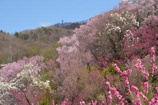 FukushimaTrip_11.jpg