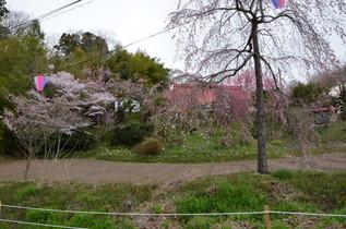 FukushimaTrip_15a.jpg