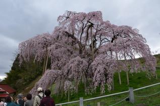 FukushimaTrip_19.jpg