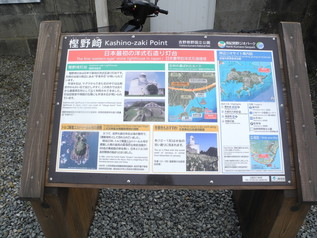 kashinozaki_12.jpg