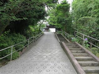 kashio_07.jpg