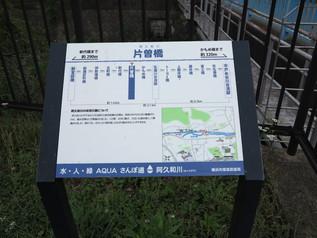kashio_11.jpg