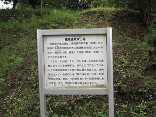 kashio_24.jpg