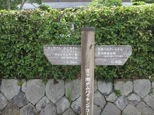 miyagase_11.jpg
