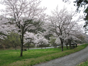 ashida_08.jpg