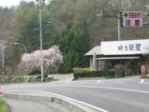 ashida_10.jpg