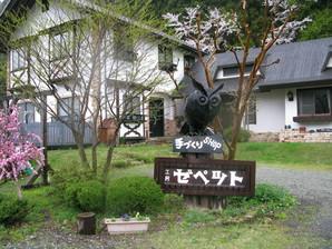 ashida_30.jpg