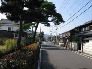 echigawa_08.jpg
