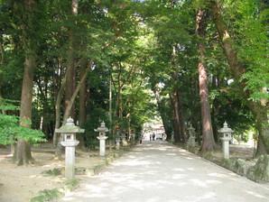 echigawa_14.jpg