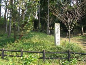 echigawa_32.jpg