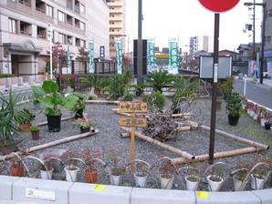 echigawa_47.jpg