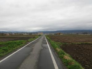 iwamurata_02.jpg