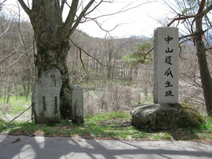 iwamurata_26.jpg