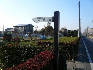 kohnosu_30.jpg