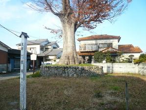 kumagaya_26.jpg