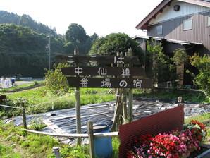 samegai_09.jpg