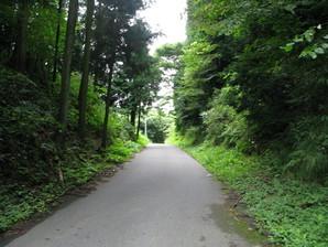 tarui_47.jpg