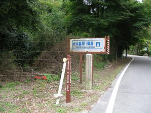 tarui_61.jpg