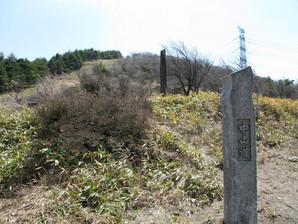 wada_29.jpg
