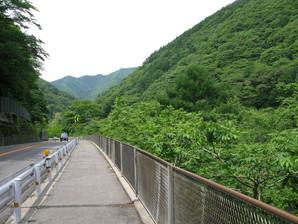 yabuhara_02.jpg