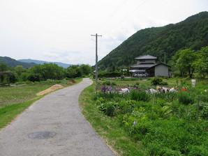 yabuhara_12.jpg