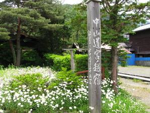 yabuhara_18.jpg