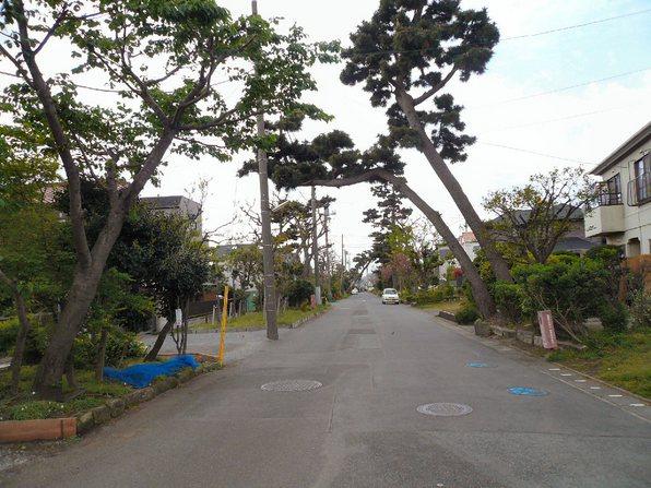 chigasaki_023.jpg