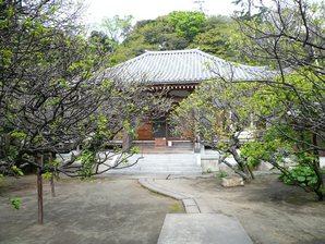 chigasaki_026.jpg