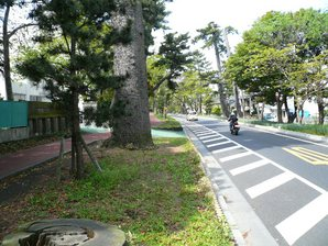 chigasaki_038.jpg