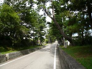 fujikawa_03.jpg