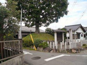 fujikawa_06.jpg